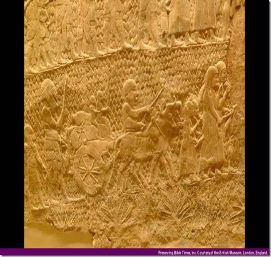 Assyrian Deportation