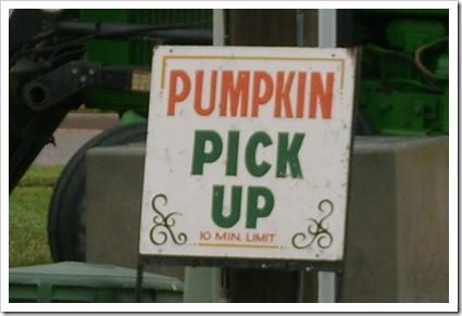 pumpkin day 012
