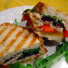 Marinated Chicken Panini