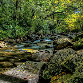 North Carolina Stream in the Great Smoky Mountains by Jerry Ward - Nature Up Close Rock & Stone ( water, stream, brook, creek, moss, serenity peace, quiet, rocks )