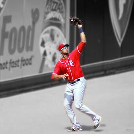 by Ryan Niemiec - Sports & Fitness Baseball