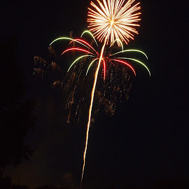Just Dandy by Don Bruechert - Abstract Fire & Fireworks ( dandelion, night lights, holidays, fireworks, independence day )