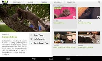 Screenshot of Animal Planet