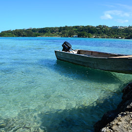 Vanuatu by Mandy Dale - Novices Only Landscapes