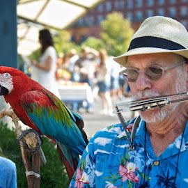 Duo by Hugh Hazelrigg - People Musicians & Entertainers ( indiana, bloomington, pixoto, performer, busker, street scene, public, people )