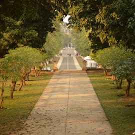 Pathway by Kavya Rastogi - Landscapes Travel ( nature, roorkee, administrative block, green, symettry, iit )