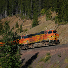 BNSF Locomotive Power by Jonathan Abrams - Transportation Trains ( bnsf, mountain, locomotive, montana, train )