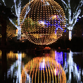 0165-Zoolights World Reflection! by Fred Herring - Public Holidays Christmas (  )