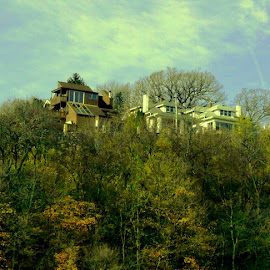 Hilltop Homes in Dubuque by Kathy Rose Willis - Buildings & Architecture Homes ( iowa, green, hilltop, trees, homes, dubuque )