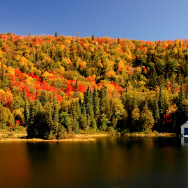 Awoga Gorge by Alen Jerinic - Landscapes Travel ( water, orange, canada, gorge, forest, lake, ontario, house, colours, blue sky, colourful, red, autumn, blue roof )
