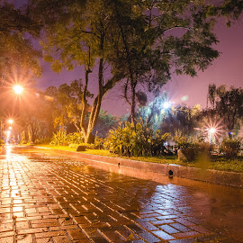 Nightscape by Blaze Sy - City,  Street & Park  Night ( bricks, burnham park, nightscape, purple, yellow, color )