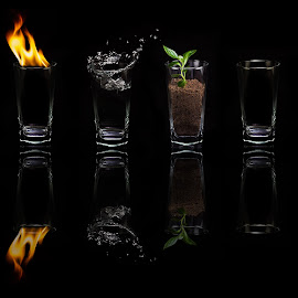 Life in 4 Elements by Daryl Visser - Digital Art Things ( water, wind, art, air, earth, fire )