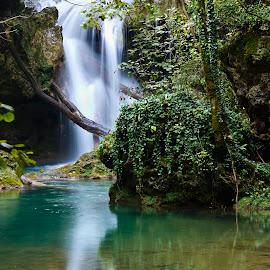 Waterfall Văioaga  by Petre Dalea - Landscapes Waterscapes ( waterscape, waterfall,  )