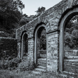 Errwood Hall Ruins by Mark Richard Day - Buildings & Architecture Decaying & Abandoned ( errwood hall, goyt valley, black and white, ruins, peak district )