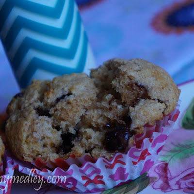 Whole-Wheat Chocolate-Chip Muffins