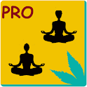Partner Yoga PRO icon