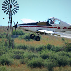 Low Flying  by Coena le Roux - Transportation Airplanes