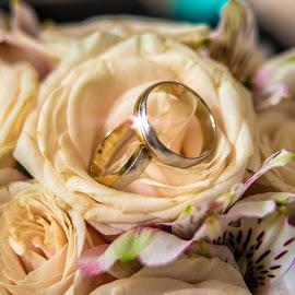 by Jovan Barajevac - Wedding Details ( rose, wedding, yelow, bucket, rings, flower )