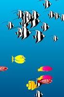 Screenshot of PoissonRouge Aquarium