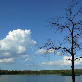 We took a 4 day mini-vacation at the lake over the last weekend. The weather was incredible, the clouds were breathtaking, and the whole weekend was quiet and peaceful. by Wendy Grimes - Landscapes Cloud Formations