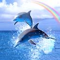 Rainbow Ocean icon