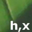 h,x calc icon