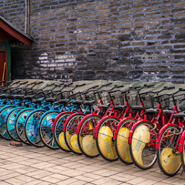 Neatly lined up in harmony.. by Photographyof Jack Jack - Transportation Bicycles