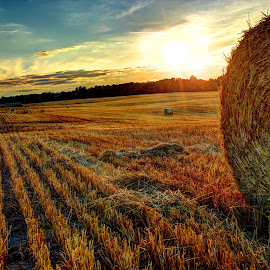 Rollin out the Harvest by Kristin Bruner Shriver - Landscapes Sunsets & Sunrises (  )