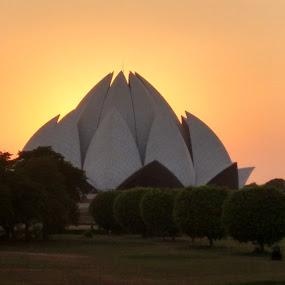 lotus temple by Soumen Das - Landscapes Sunsets & Sunrises