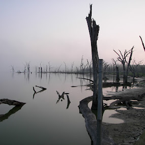 Lake in dry season by Raymond Earl Eckert - Landscapes Waterscapes