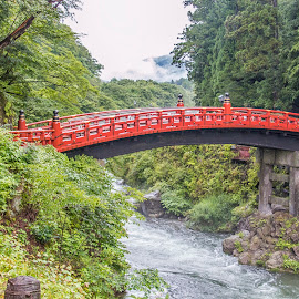Nikko Bridge by Sue Matsunaga - Buildings & Architecture Bridges & Suspended Structures