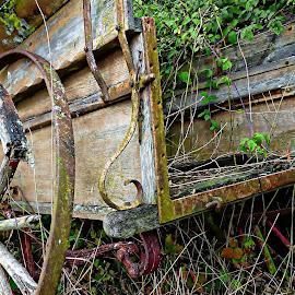 Roadworthy? by Costa Philippou - Transportation Other ( wooden, wagon, transportation, antique )
