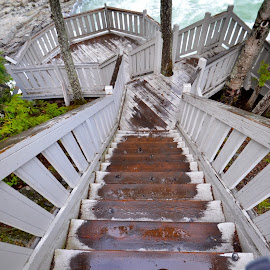 Flathead River Overlook by Greg Koehlmoos - Buildings & Architecture Other Exteriors ( touring montana, montana, montana tourism, steep stairs, tourism montana, watch your step, hazardous stairs, flathead river, glacier national park, steep staircases )