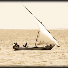 Out Fishing by Werner Booysen - Transportation Boats ( waterscape, sea, ocean, sails, seascape, boat, sailboat, fishing boat, sail boat, dhow, outdoor, fishing, werner booysen,  )