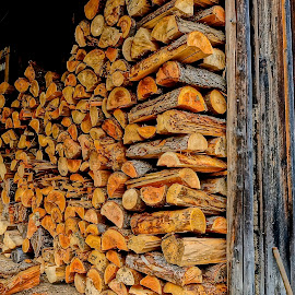 Wood in Wait by Barbara Brock - Artistic Objects Still Life ( wood stacked, logs, wood pile, firewood, fall, color, colorful, nature )