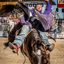Get Off My Back by Troy Wheatley - Sports & Fitness Rodeo/Bull Riding ( cowboy, horse, rodeo, bronco, boots )