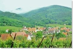 h - Alsace - Riquewihr 40