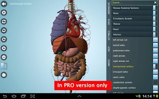 Screenshot of Anatomy 3D - Anatronica