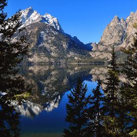 Jenny Lake & The Tetons by Dan Kinghorn - Landscapes Mountains & Hills ( mountain lakes, jenny lake, lakes, grand tetons, tetons )