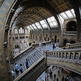 NHM July 2014-01 by Almas Bavcic - Buildings & Architecture Other Interior ( canon, building, people )