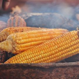 Golden Harvest by Anoop Namboothiri - Food & Drink Cooking & Baking ( charcoal, corns, street, vegetables, fire, pot, pan, roasting, coal, fumes, anoop namboothiri, cooking, market place,  )