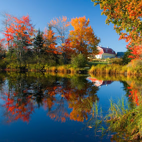 Fall color in Maine. by Gale Perry - Landscapes Waterscapes ( blue, orange. color, , fall, color, colorful, nature, mood factory, vibrant, happiness, January, moods, emotions, inspiration, relax, tranquil, relaxing, tranquility )
