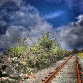 by Todd Klingler - Transportation Railway Tracks