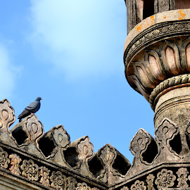by Anirudh Gadey - Buildings & Architecture Architectural Detail