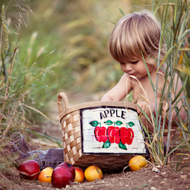 Sorting Apples by Chinchilla  Photography - Babies & Children Toddlers