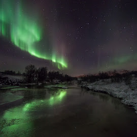 Reflecting aurora by Benny Høynes - Landscapes Starscapes ( winter, northernlights, ice, aurora borealis, norway, river, colours )