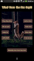 Screenshot of Fox Say What? Soundboard