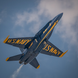 Up Up and Away by Linda Karlin - News & Events US Events ( clouds, sky, patriotic, air show )