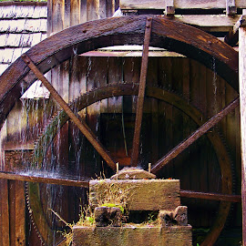 mill wheel by Delores Mills - Buildings & Architecture Other Exteriors ( water, mill wheel, wood,  )