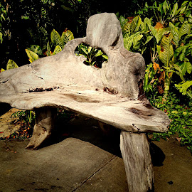 Carved Wood bench by Janette Ho - Artistic Objects Furniture ( public, bench, furniture, object )